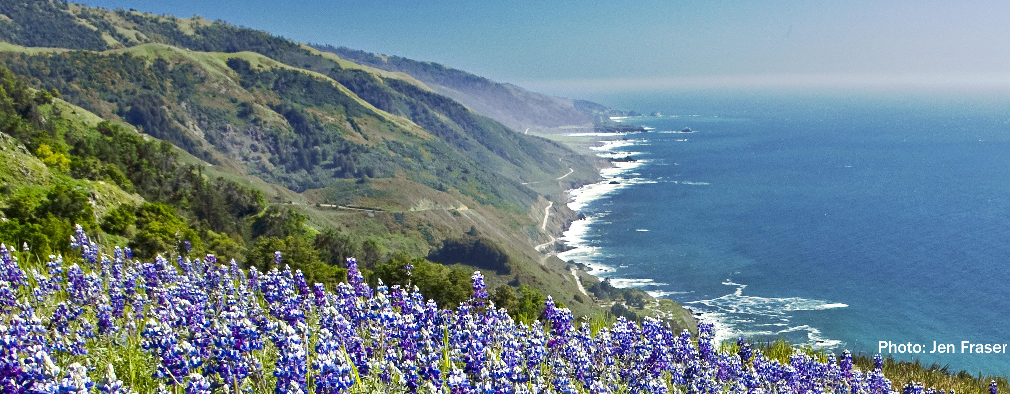 california coastal commission